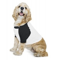 American Apparel Dog 3/4 Sleeve Raglan T
