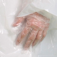 Disposable PE Glove (Embossed)