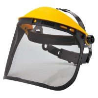 Browguard with Mesh Visor